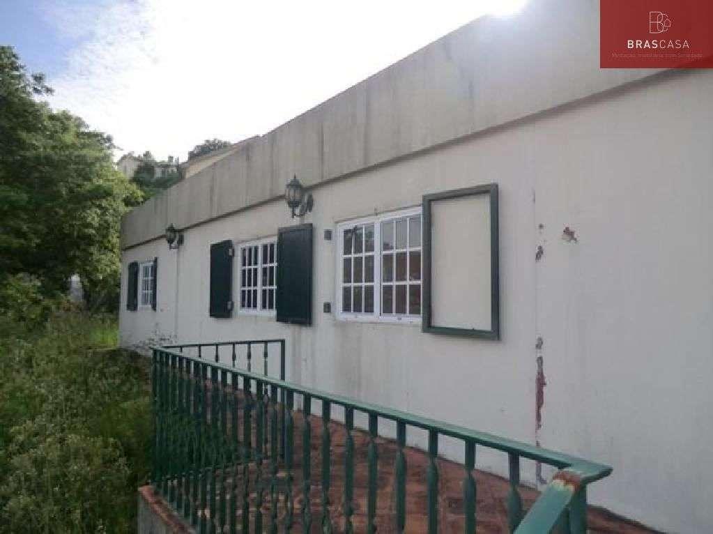 Moradia para comprar, Sever do Vouga, Aveiro - Foto 2