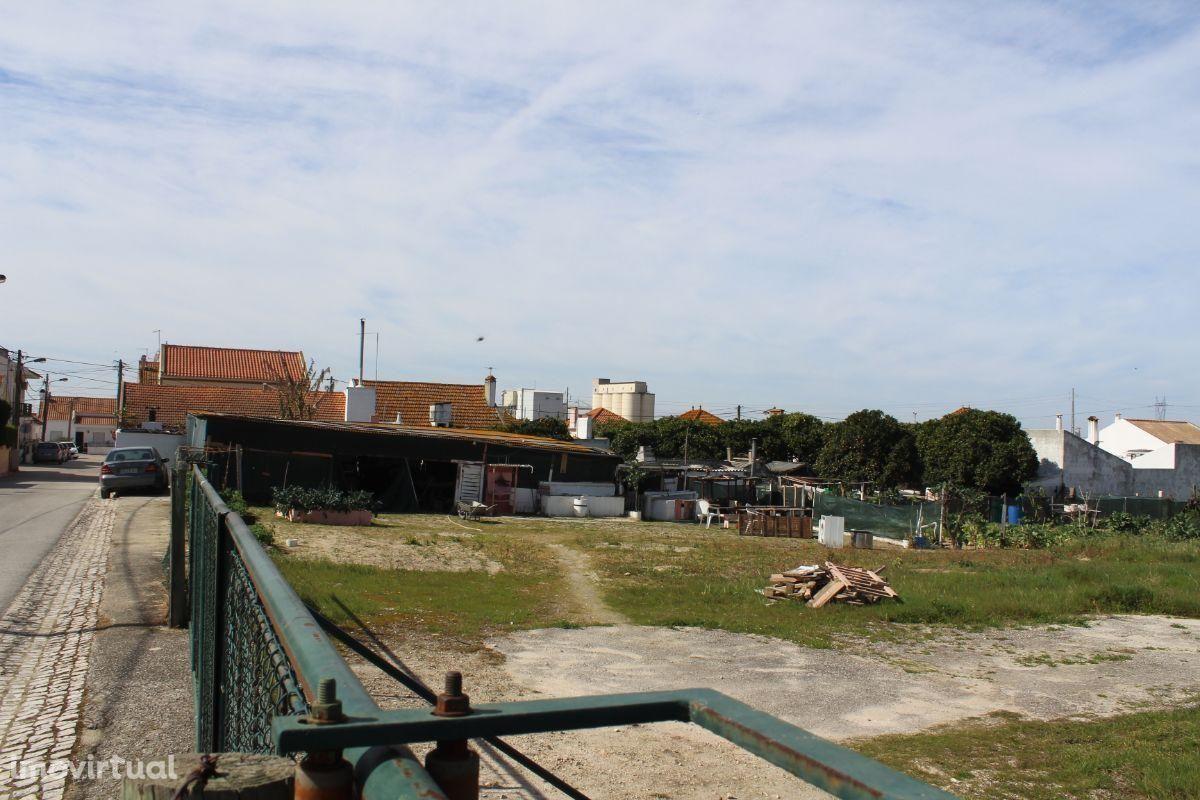 Excelente terreno com 5000 m2 junto a estrada alcatroada num complexo de moradias isoladas.