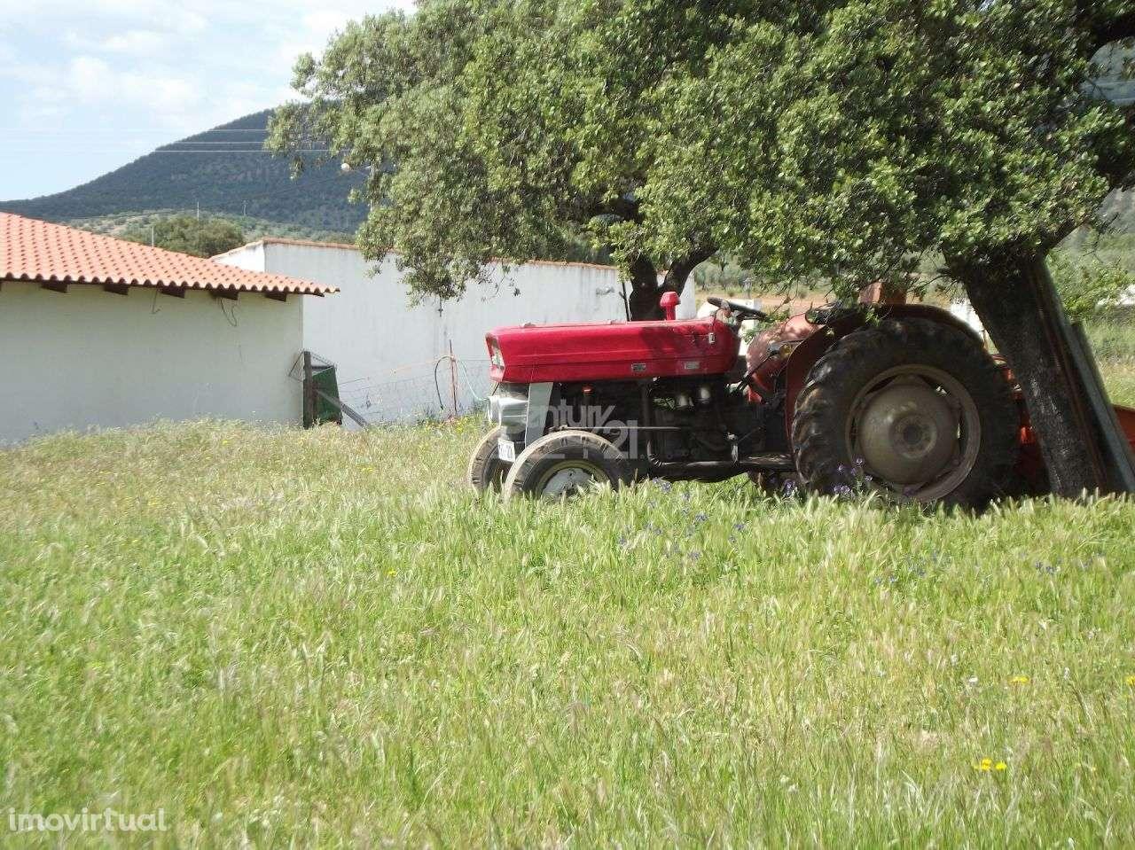Quintas e herdades para comprar, Vila Nova de São Bento e Vale de Vargo, Serpa, Beja - Foto 6