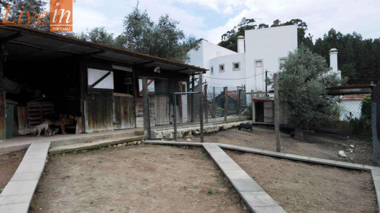 Quintas e herdades para comprar, Lousa, Lisboa - Foto 27