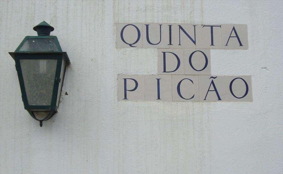 Terreno para comprar, Azeitão (São Lourenço e São Simão), Setúbal - Foto 5