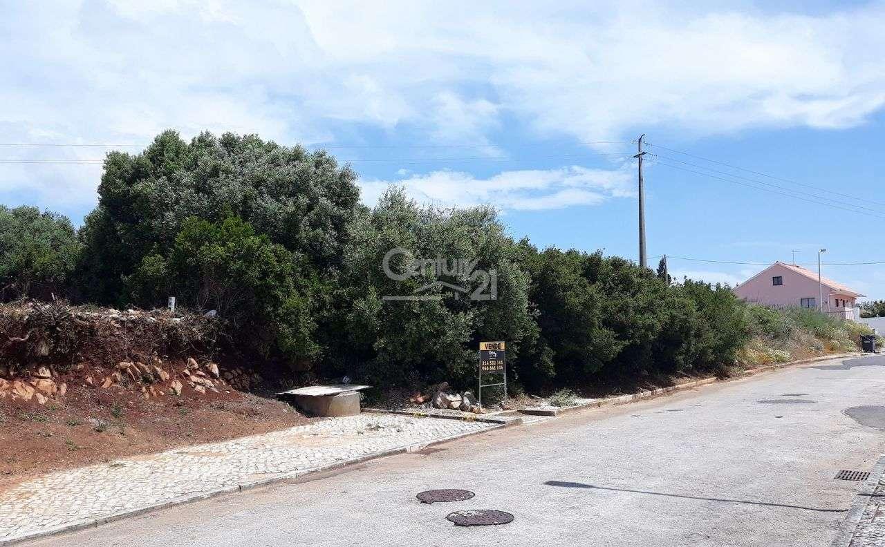 Terreno para comprar, Alcabideche, Cascais, Lisboa - Foto 10