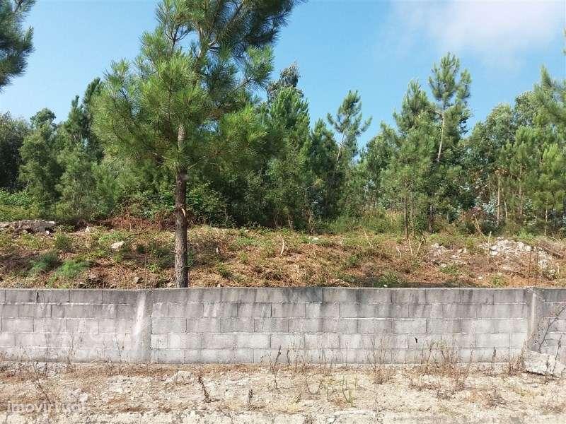 Terreno para comprar, Milhazes, Vilar de Figos e Faria, Braga - Foto 7