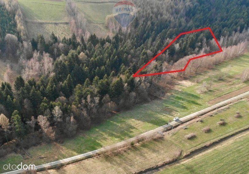 Działka rolno - leśna 40 ar Mystków