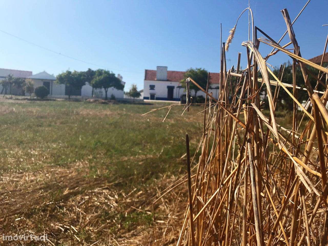 Quintas e herdades para comprar, Cortiçadas de Lavre e Lavre, Montemor-o-Novo, Évora - Foto 17