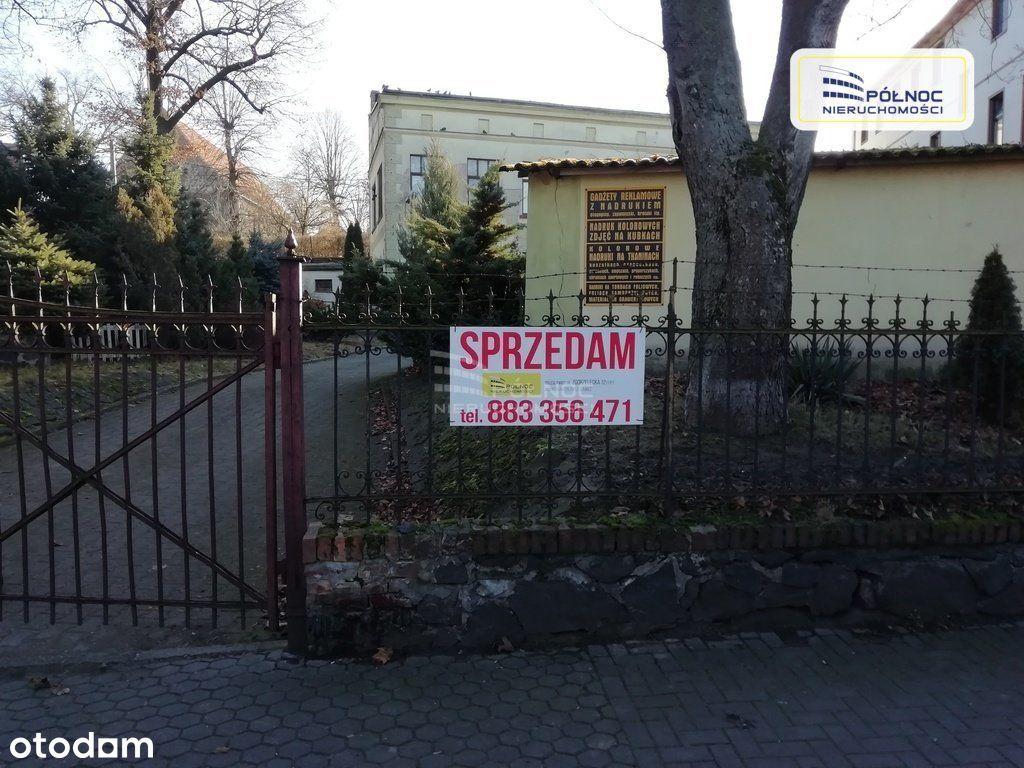 Lokal użytkowy, 500 m², Lubań