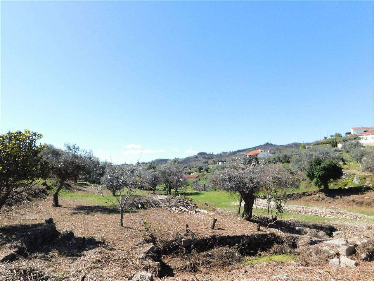 Terreno para comprar, Alpedrinha, Castelo Branco - Foto 3