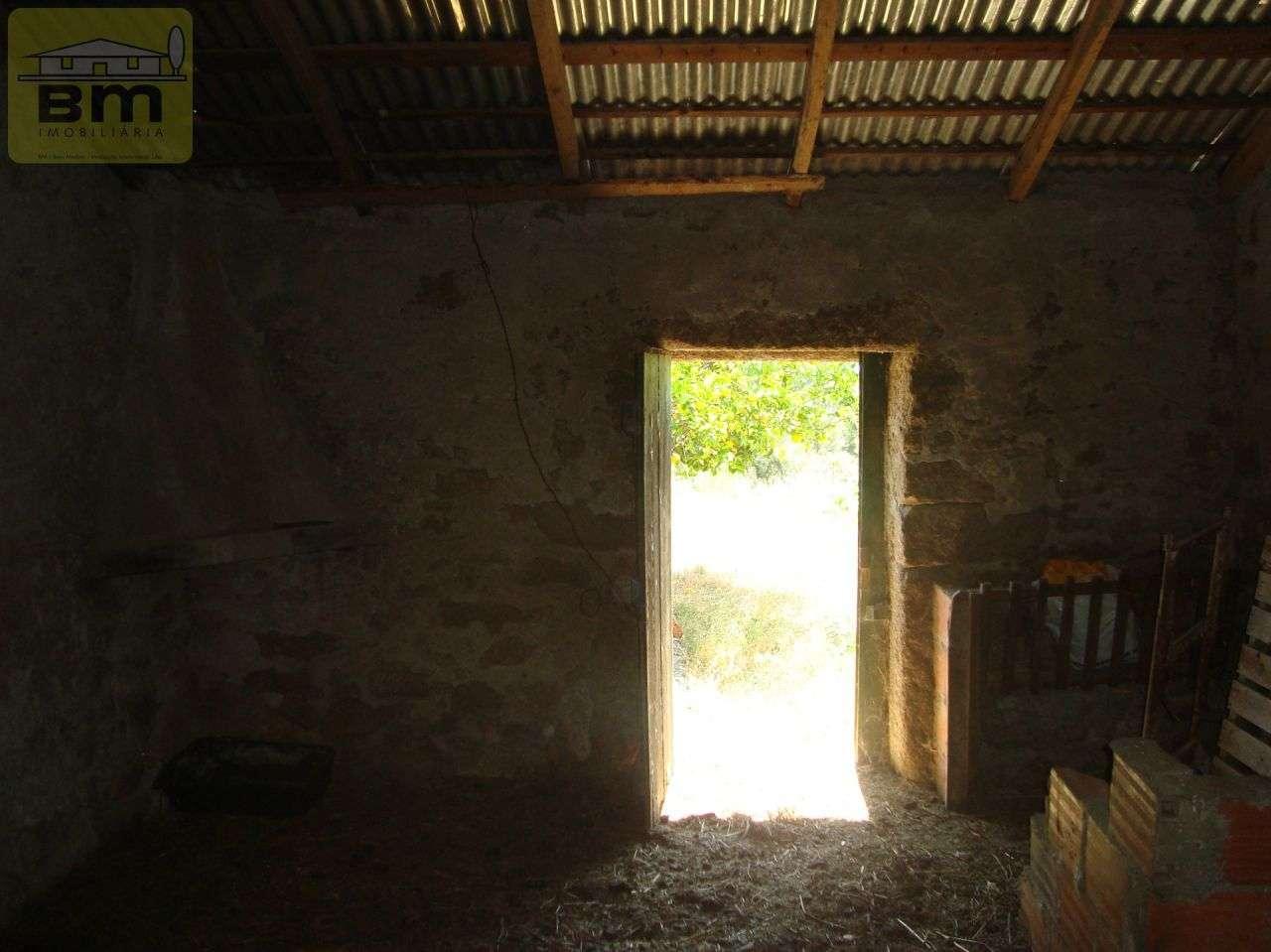 Quintas e herdades para comprar, Almaceda, Castelo Branco - Foto 42