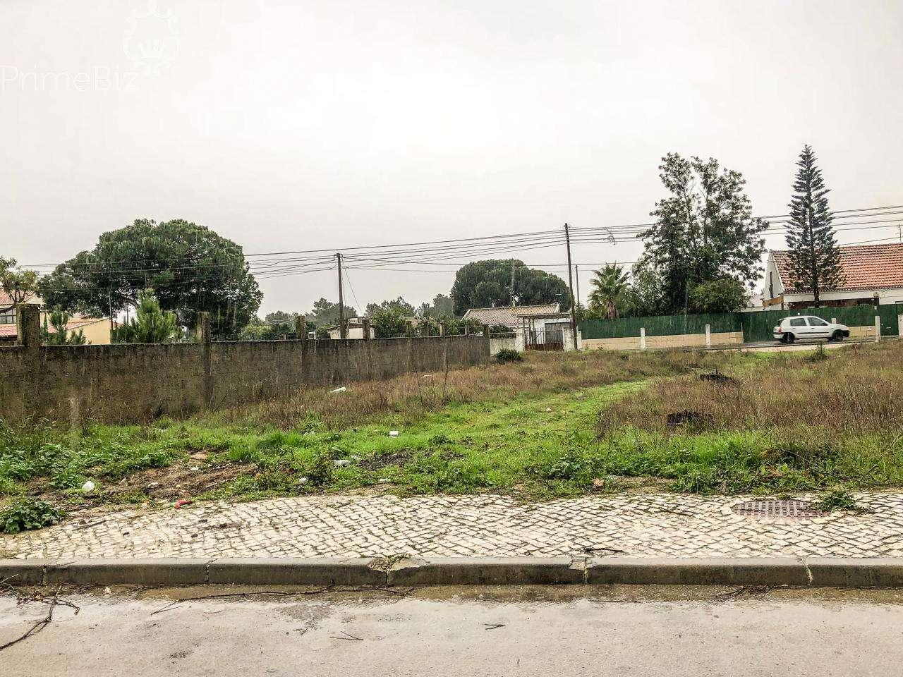 Terreno para comprar, Quinta do Anjo, Palmela, Setúbal - Foto 3
