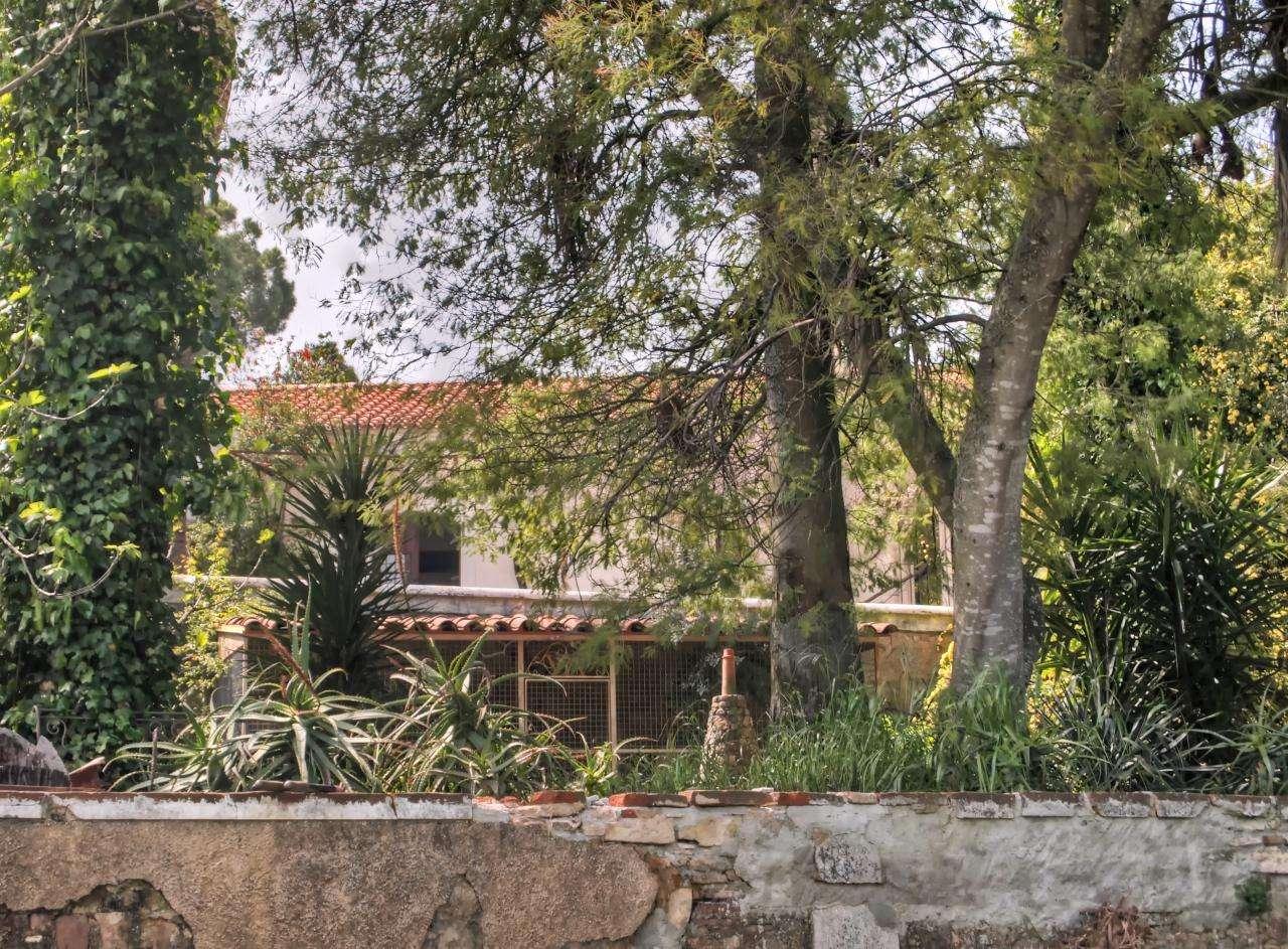 Quintas e herdades para comprar, São Brás e São Lourenço, Elvas, Portalegre - Foto 35