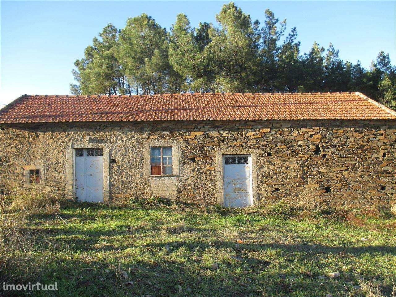Quintas e herdades para comprar, Enxames, Castelo Branco - Foto 1