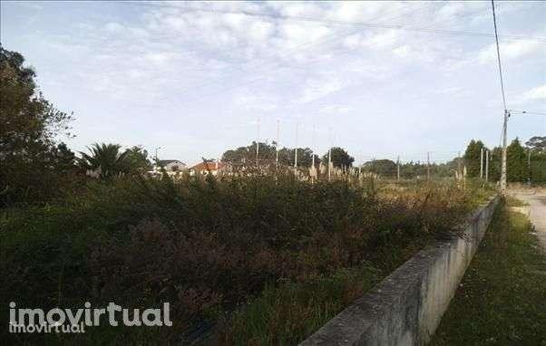 Terreno para comprar, Belazaima do Chão, Castanheira do Vouga e Agadão, Águeda, Aveiro - Foto 1
