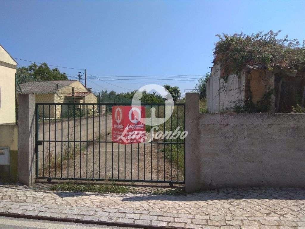 Terreno para comprar, Pereira, Coimbra - Foto 1