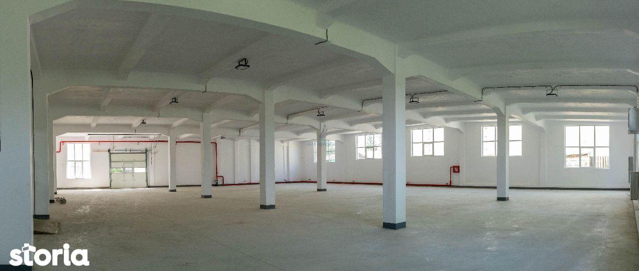 Complex de hale industriale de vanzare, la 55 km de Oradea,Bihor A1595
