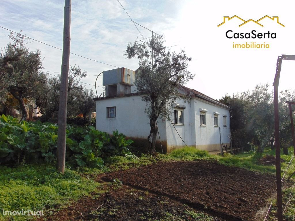 Terreno para comprar, Castelo, Sertã, Castelo Branco - Foto 13
