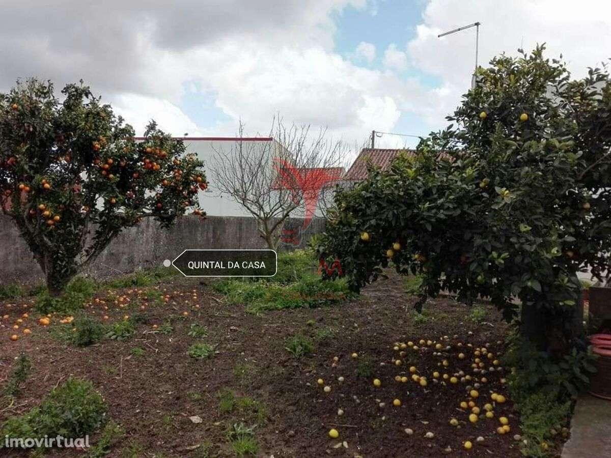 Moradia para comprar, Moita dos Ferreiros, Lourinhã, Lisboa - Foto 2