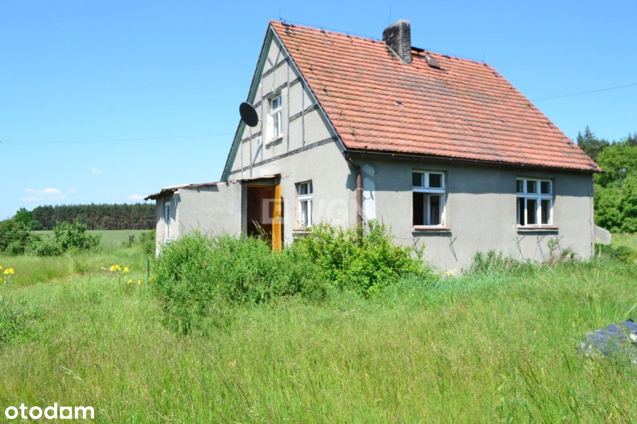 Dom, 80 m², Masełkowice