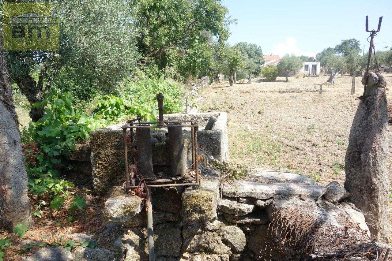 Quintas e herdades para comprar, Escalos de Cima e Lousa, Castelo Branco - Foto 10