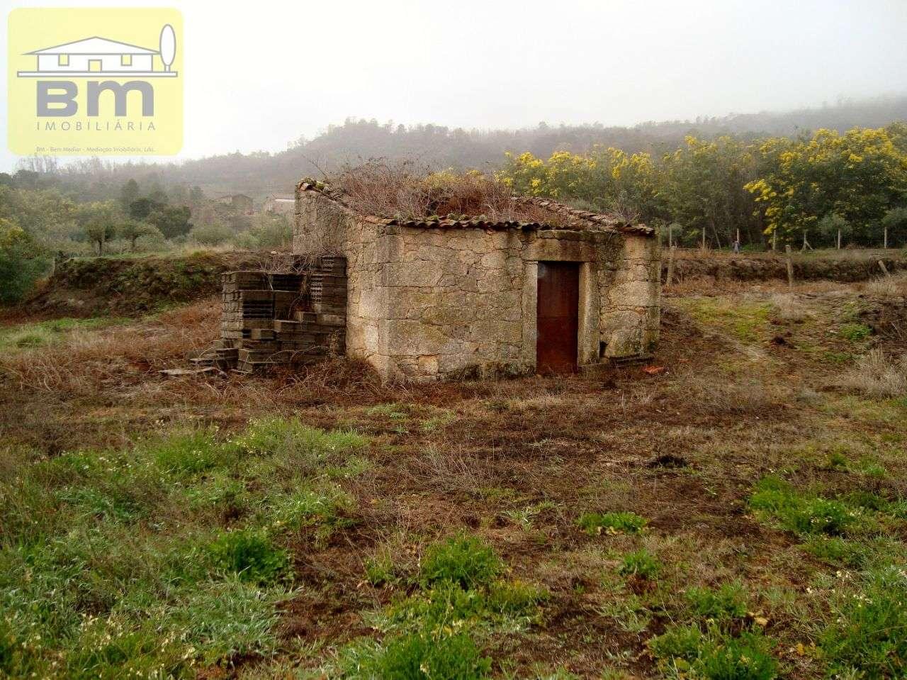 Quintas e herdades para comprar, Almaceda, Castelo Branco - Foto 14