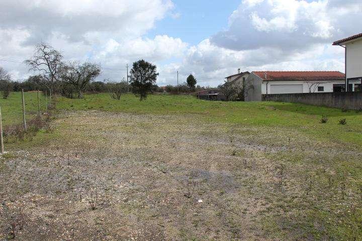 Terreno para comprar, Mortágua, Vale de Remígio, Cortegaça e Almaça, Viseu - Foto 11