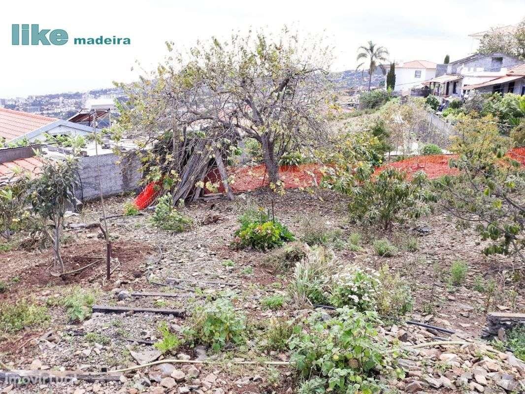 Terreno para comprar, Imaculado Coração Maria, Ilha da Madeira - Foto 5