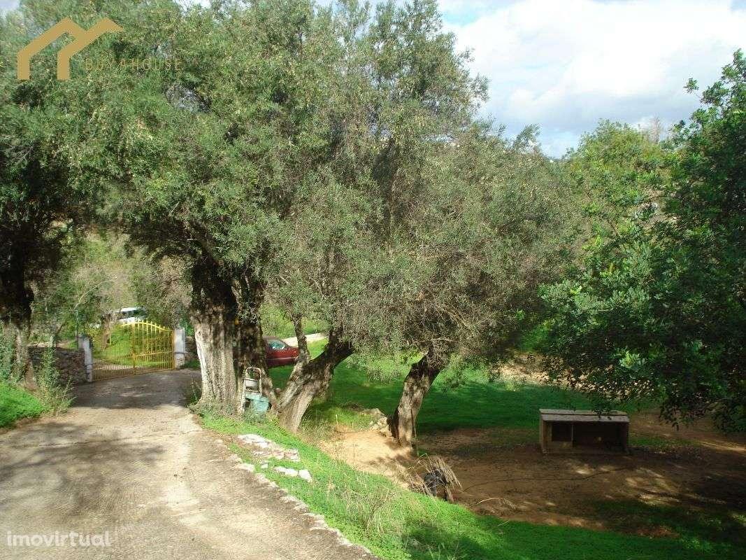Quintas e herdades para comprar, Almancil, Loulé, Faro - Foto 14
