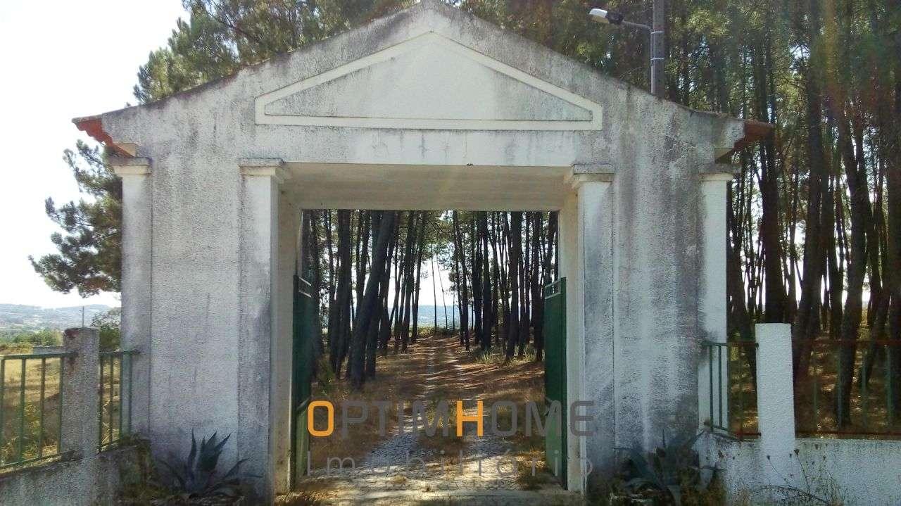 Quintas e herdades para comprar, Caria, Belmonte, Castelo Branco - Foto 33