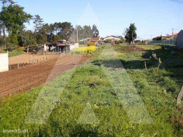 Terreno para comprar, Recardães e Espinhel, Aveiro - Foto 1