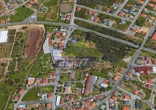 Terreno para comprar, Escapães, Aveiro - Foto 1