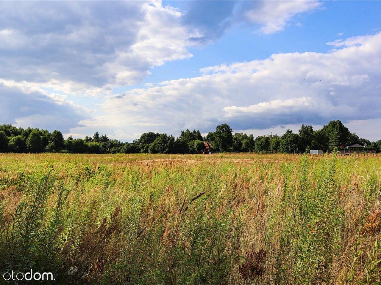 Działka w rejonie Łódź Polesie, w zielonej okolicy