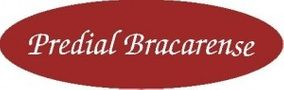 Agência Imobiliária: Predial Bracarense