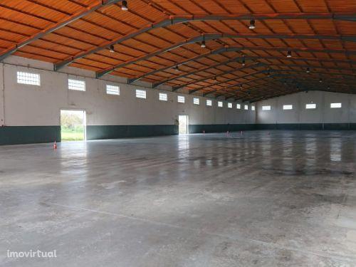 Vende-se armazém Industrial 2000m2 Área Útil em Open Space