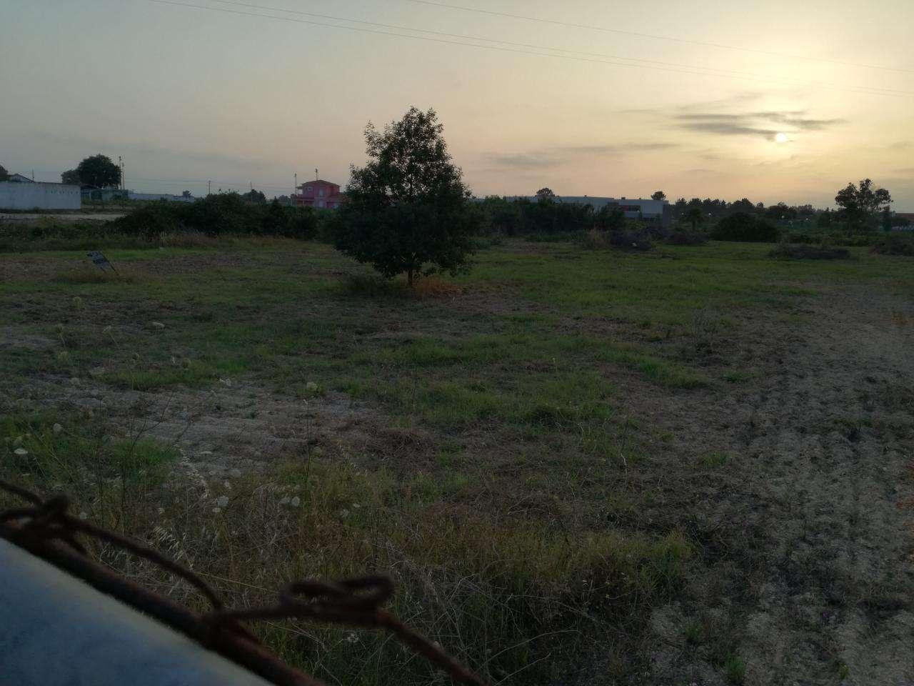Terreno para comprar, Marinhais, Santarém - Foto 3