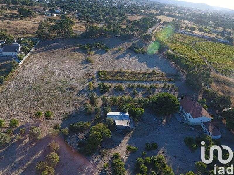 Quintas e herdades para comprar, Gâmbia-Pontes-Alto Guerra, Setúbal - Foto 10