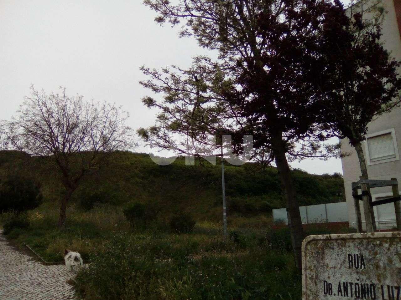 Terreno para comprar, Venteira, Amadora, Lisboa - Foto 3