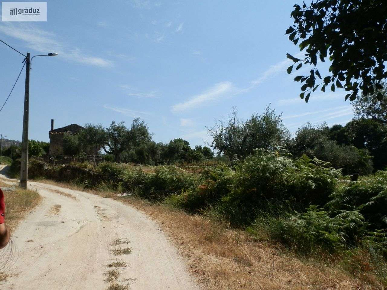 Quintas e herdades para comprar, Louriçal do Campo, Castelo Branco - Foto 5