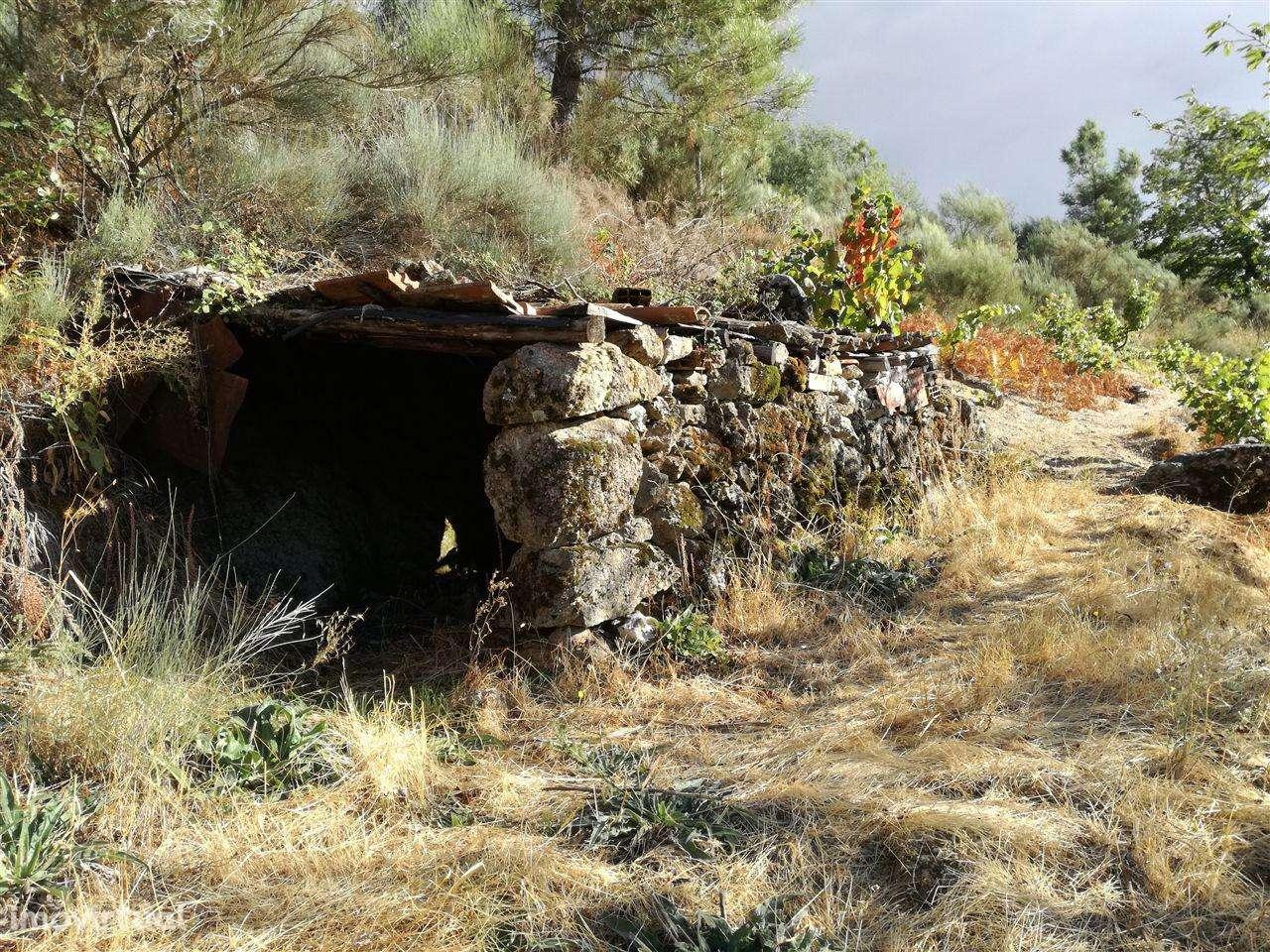 Quintas e herdades para comprar, Teixoso e Sarzedo, Castelo Branco - Foto 3