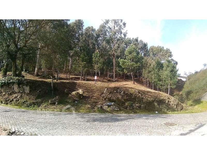 Terreno para comprar, Carvalhal, Braga - Foto 2