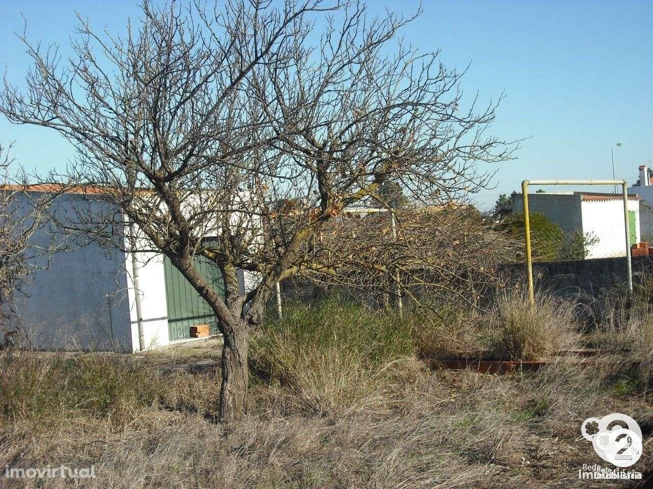 Terreno para comprar, Palmela - Foto 7