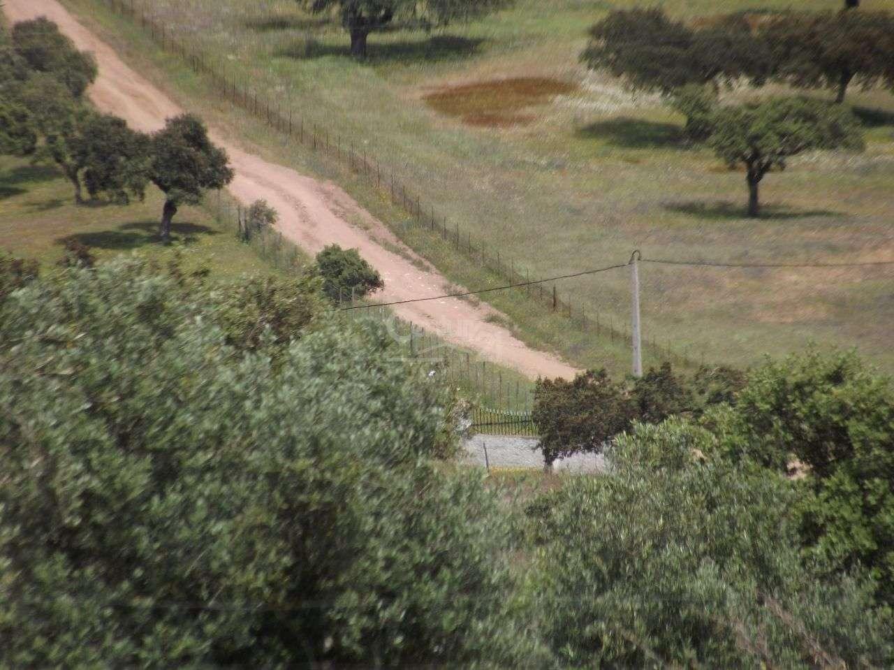 Quintas e herdades para comprar, Vila Nova de São Bento e Vale de Vargo, Serpa, Beja - Foto 3
