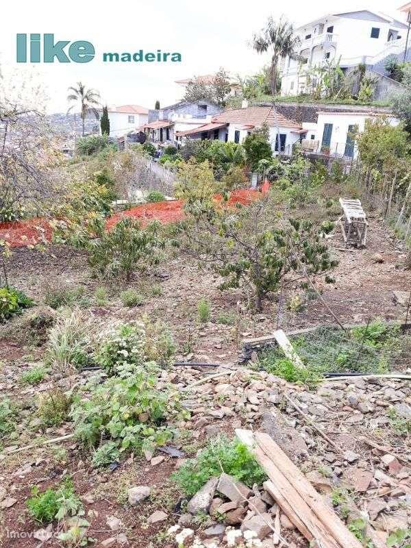 Terreno para comprar, Imaculado Coração Maria, Ilha da Madeira - Foto 9