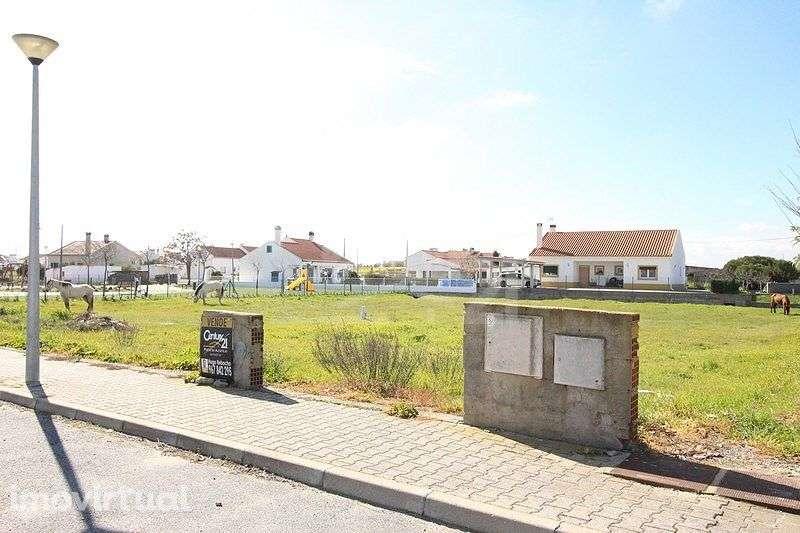 Terreno para comprar, Foros de Vale de Figueira, Évora - Foto 1