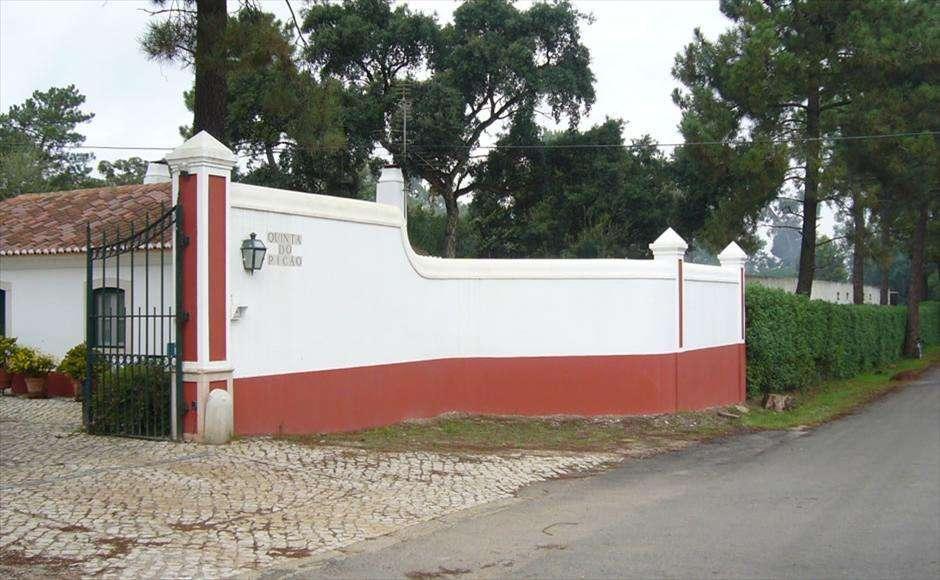 Terreno para comprar, Azeitão (São Lourenço e São Simão), Setúbal - Foto 7