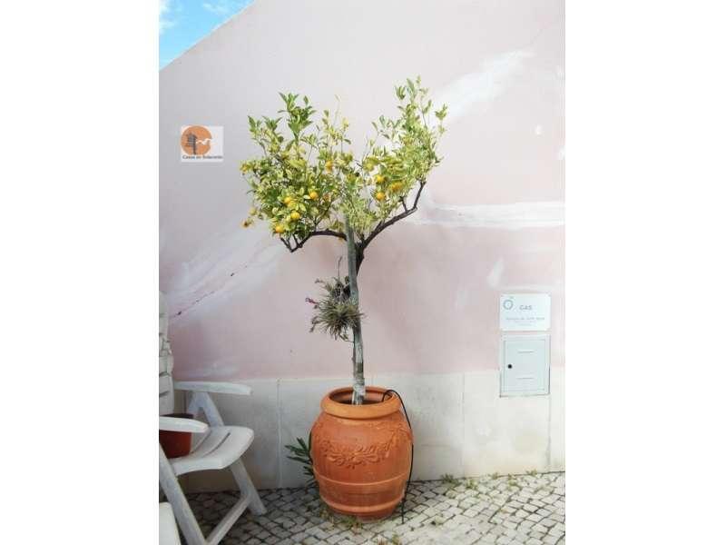 Quintas e herdades para comprar, Altura, Castro Marim, Faro - Foto 57