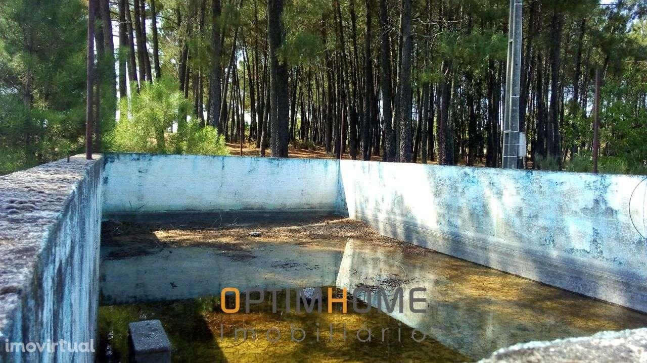 Quintas e herdades para comprar, Caria, Belmonte, Castelo Branco - Foto 14
