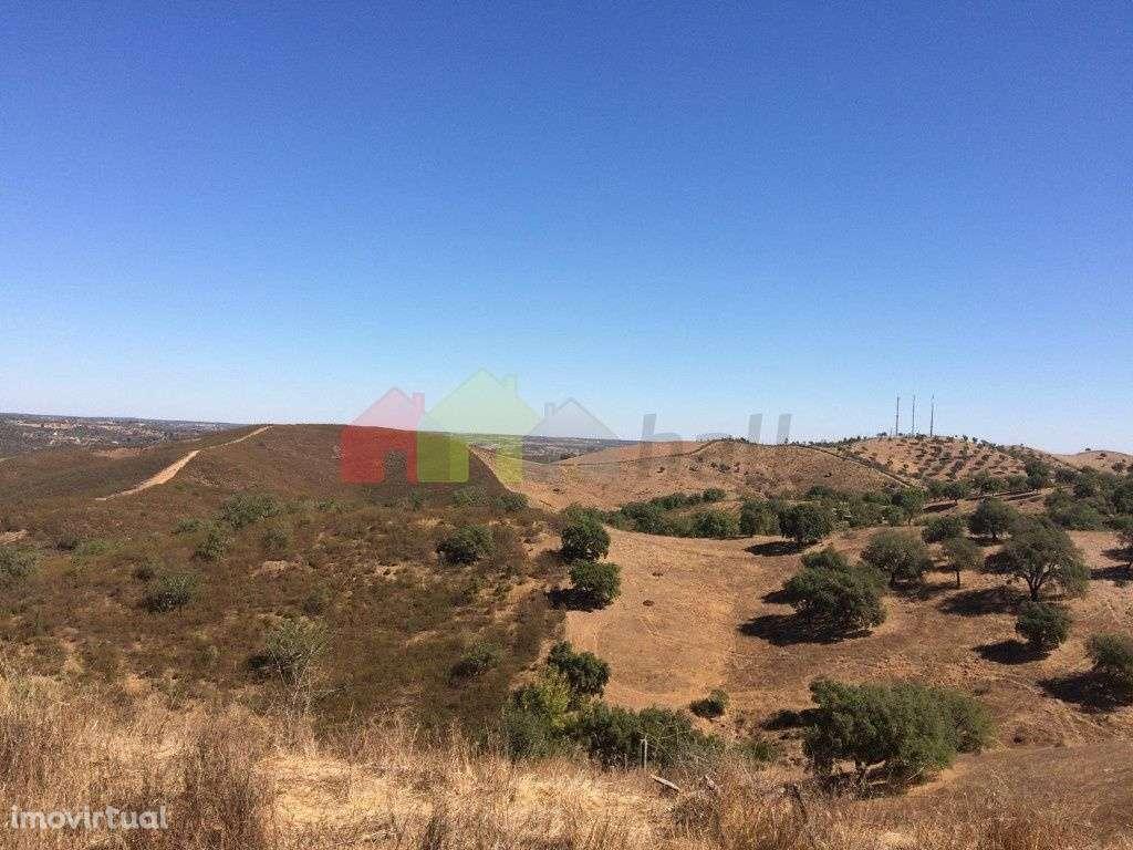 Quintas e herdades para comprar, Santana da Serra, Beja - Foto 2