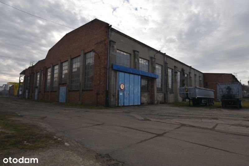 hala produkcyjno-przemysłowa w Nysie