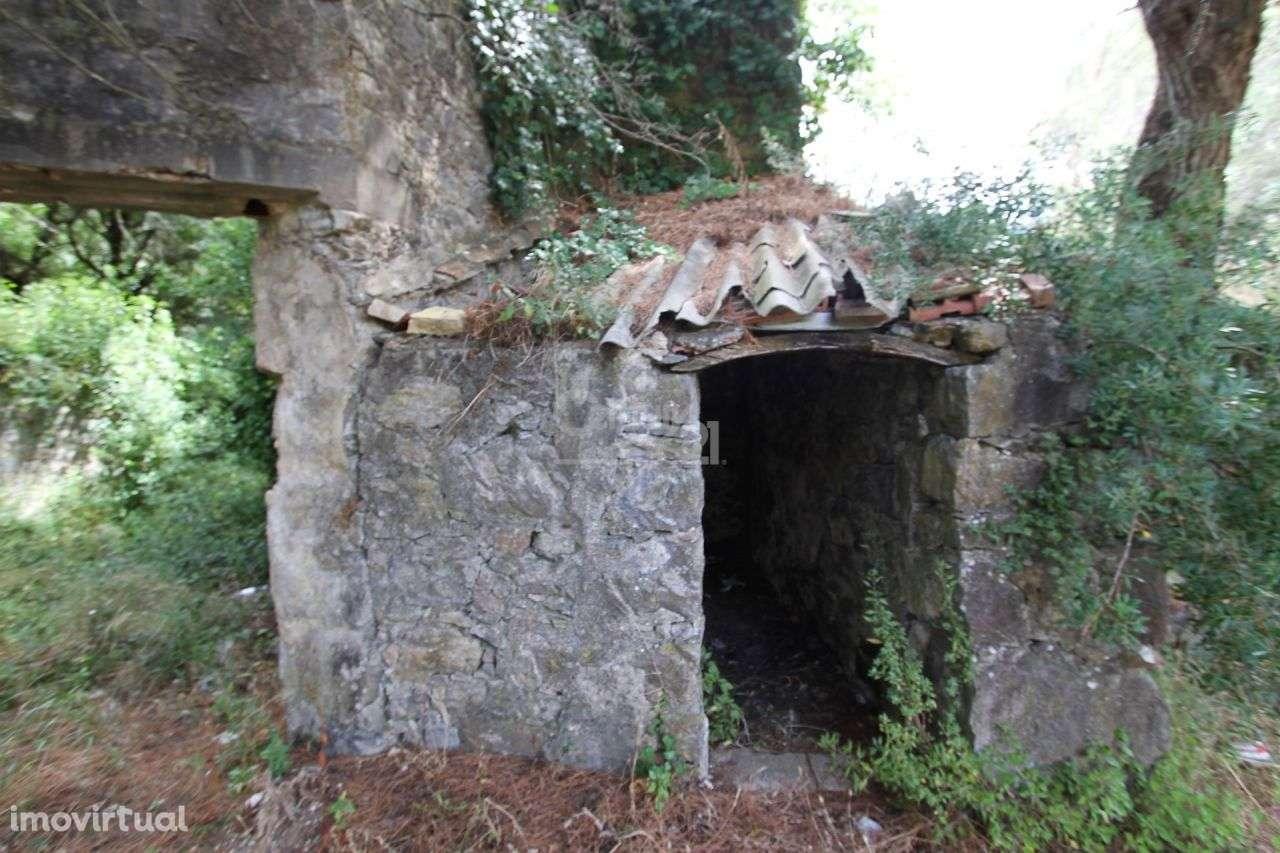 Quintas e herdades para comprar, Alcabideche, Cascais, Lisboa - Foto 10