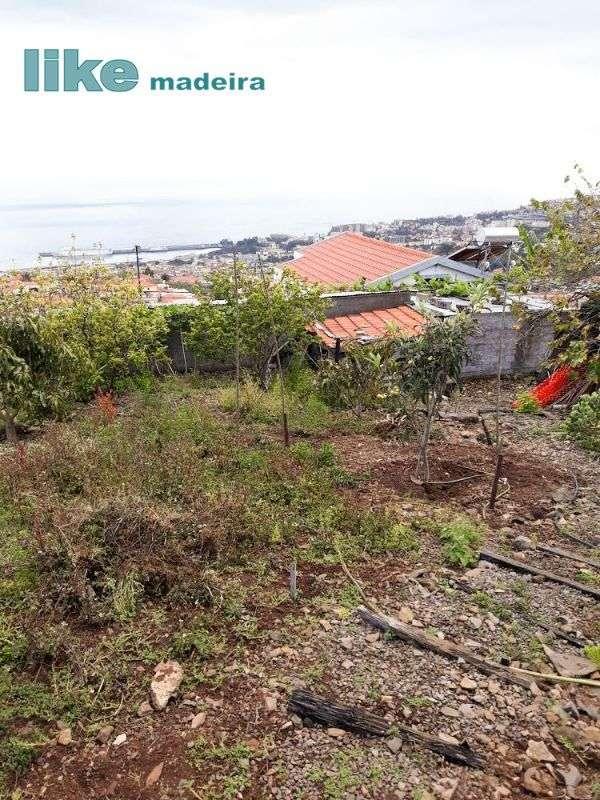 Terreno para comprar, Imaculado Coração Maria, Ilha da Madeira - Foto 10