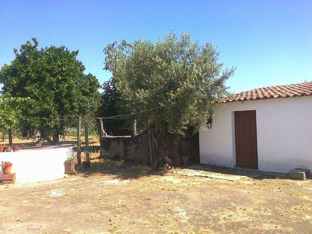 Quintas e herdades para comprar, Ponte de Sor, Tramaga e Vale de Açor, Portalegre - Foto 9